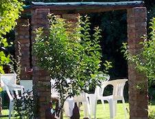 Green Oasis backyard