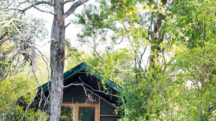 by Ndzhaka Tented Camp   LekkeSlaap