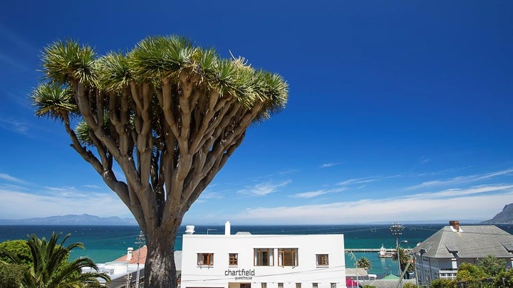Kalk Bay Accommodation at Chartfield Guesthouse | TravelGround