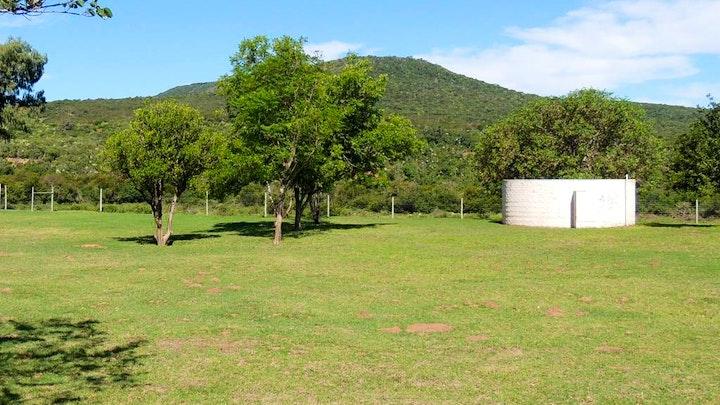 Greater Addo Accommodation at The Wild Olive Sanctuary Akkommodasie | TravelGround