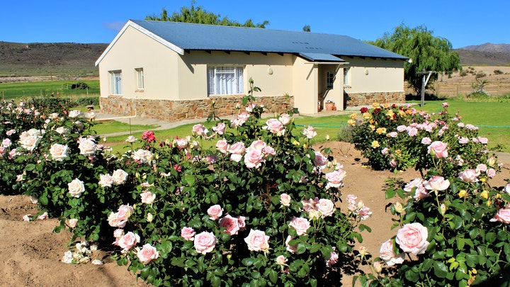 Cape Route 62 Accommodation at Middelberg Gasteplaas | TravelGround