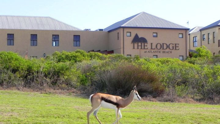 at The Lodge at Atlantic Beach | TravelGround