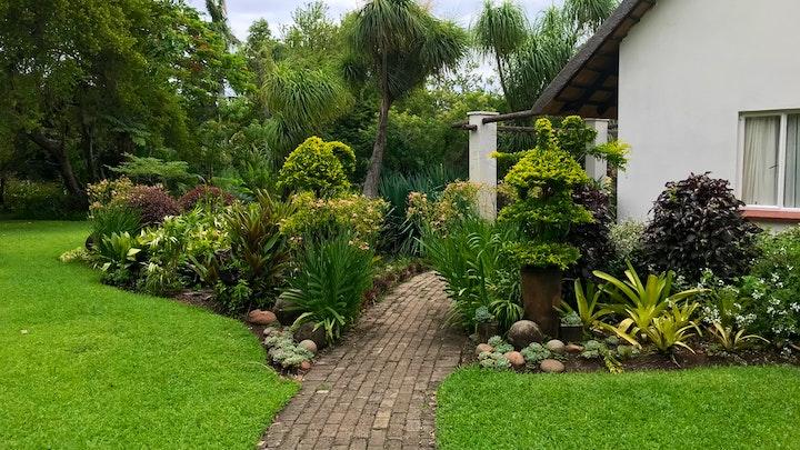 at Clivia Cottage | TravelGround