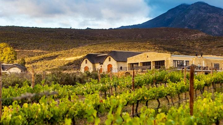 at Lord's Wine Farm | TravelGround