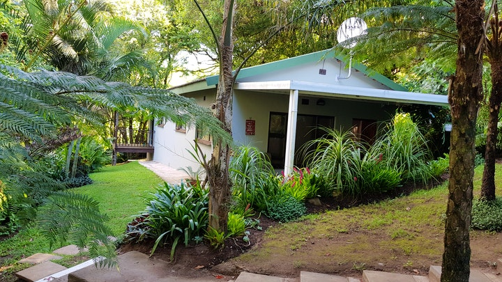 at African Dwarf Kingfisher Guesthouse | TravelGround
