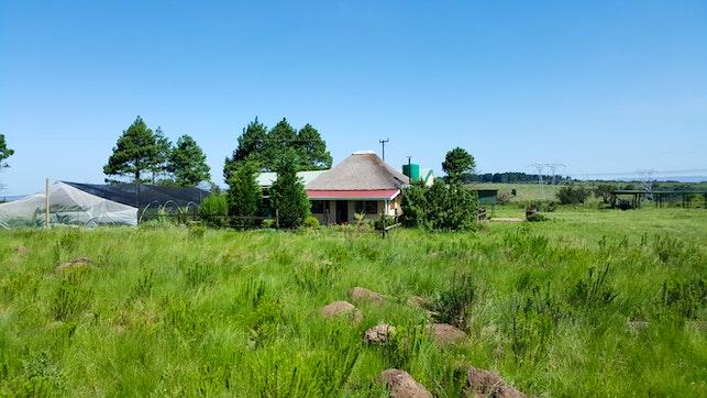 at Amber Dawn Cottage   TravelGround