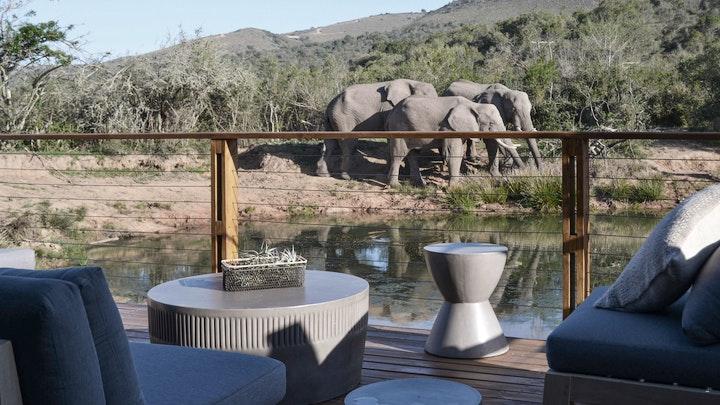 Greater Addo Akkommodasie by Barefoot Addo Elephant Lodge | LekkeSlaap
