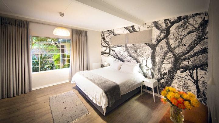 Linden Accommodation at Wildlife Photographer Cottage | TravelGround
