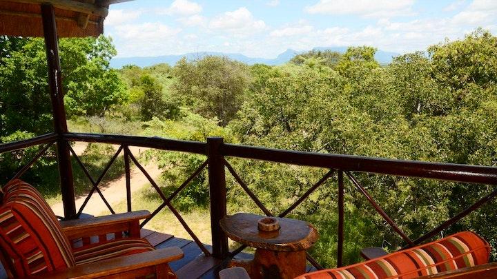 at Pezulu Tree House Game Lodge   TravelGround