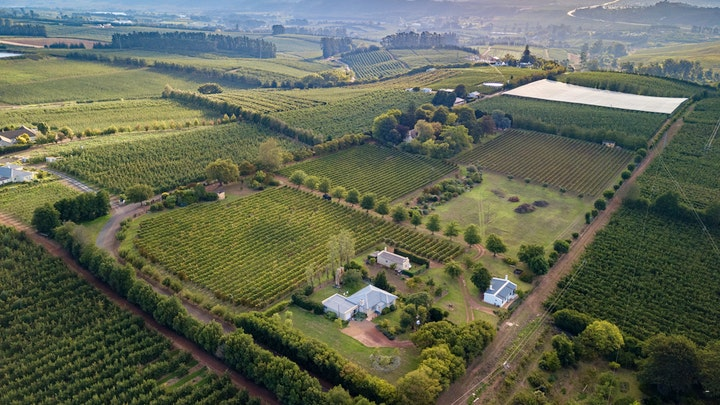 Grabouw Accommodation at Belfield Wines and Farm Cottages | TravelGround