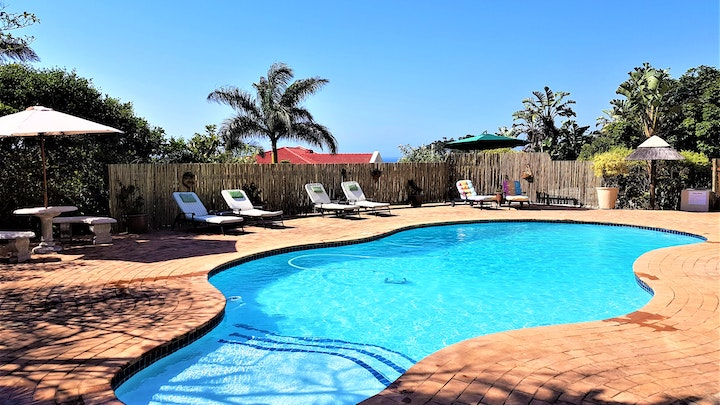 Southbroom Accommodation at Sunbirds B&B | TravelGround