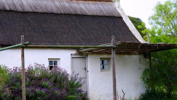 by Vermaaklikheid Olive Farm Couples' Cottage | LekkeSlaap