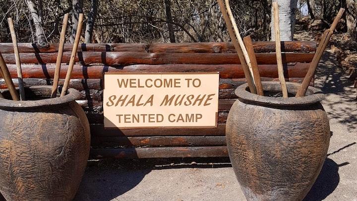 at Shala Mushe Tented Lodge @ Camp   TravelGround