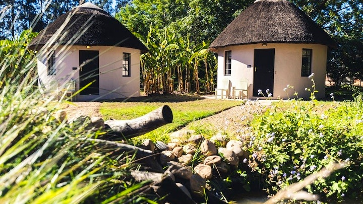 at Addo African Home, Restaurant and Safari | TravelGround