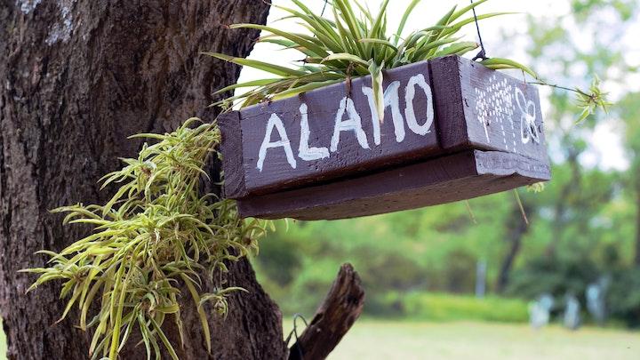 Bela-Bela Akkommodasie by Alamo Guest Farm   LekkeSlaap