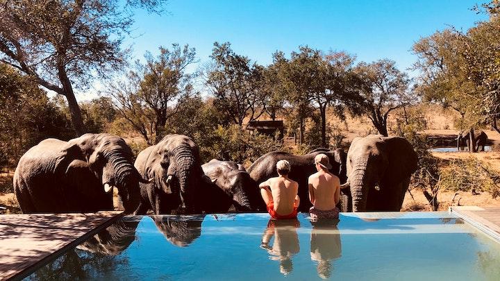 by Honeyguide Tented Safari Camp - Mantobeni | LekkeSlaap