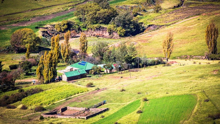 at Frosty Peaks Farmstay | TravelGround