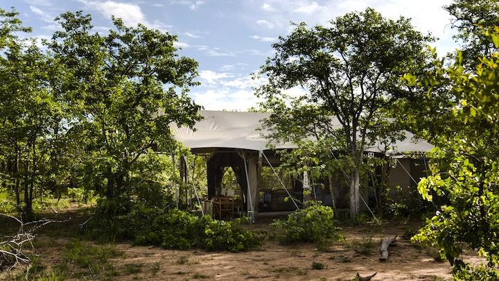 at Simbavati Trails Camp | TravelGround