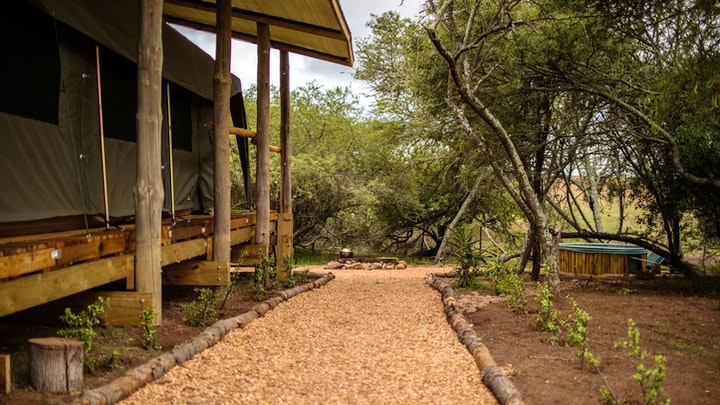 Garden Route Accommodation at Hooikraal Tented Camp   TravelGround