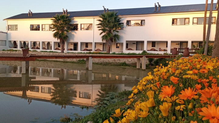 at Middelplaas Paarl Guesthouse | TravelGround