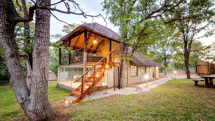 at Kruger Bush Camp | TravelGround