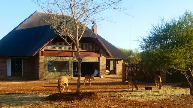 at Lesedi Lodge | TravelGround