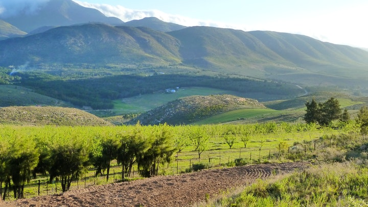 South Cape Accommodation at Fonteintjie | TravelGround