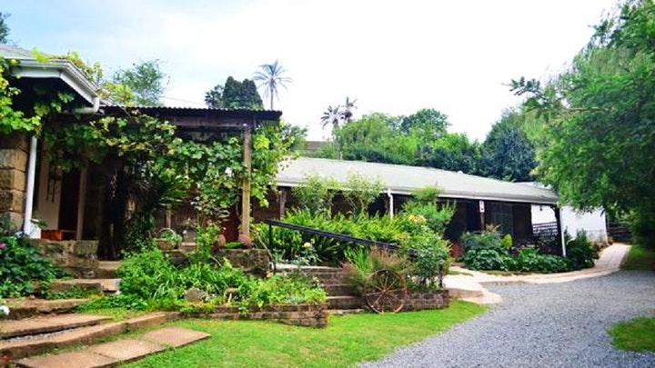 Howick Accommodation at Country Lane Guest House | TravelGround