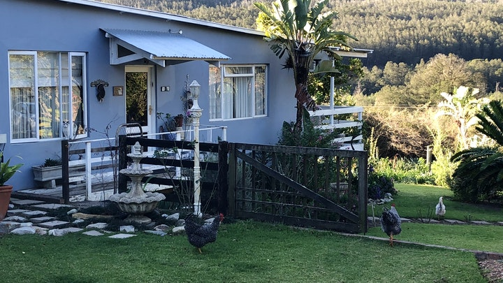 Riversdale Accommodation at Olivewood Farm | TravelGround