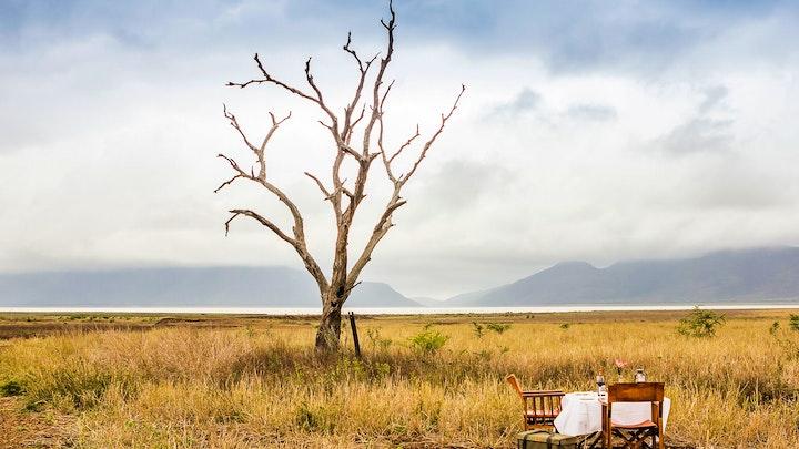 at Mpeti Game Reserve | TravelGround