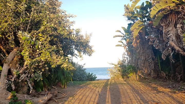 Shelly Beach Akkommodasie by Villa Albatross 1 | LekkeSlaap
