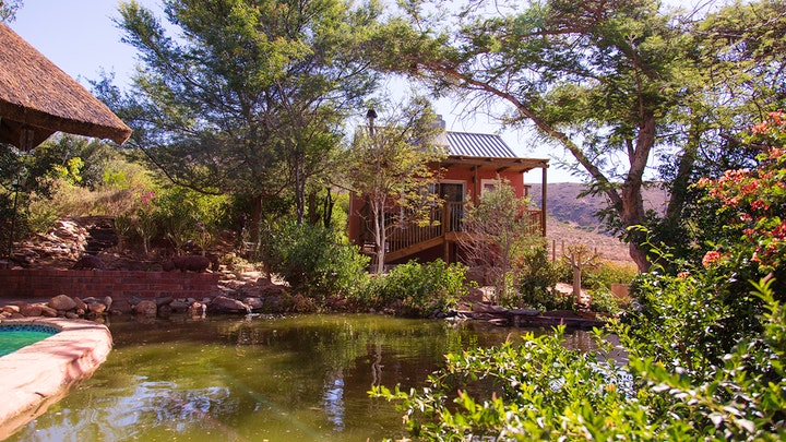 Koringberg Accommodation at Heavenly Garden Cottage in the Trees and Hobbit House | TravelGround