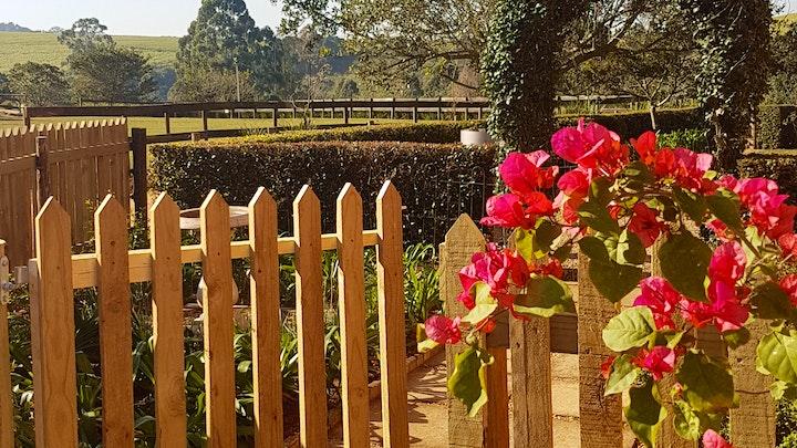 at Tehillah Farm | TravelGround