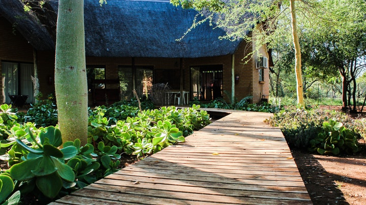 at Zingela Nature Reserve - Leadwood Lodge | TravelGround