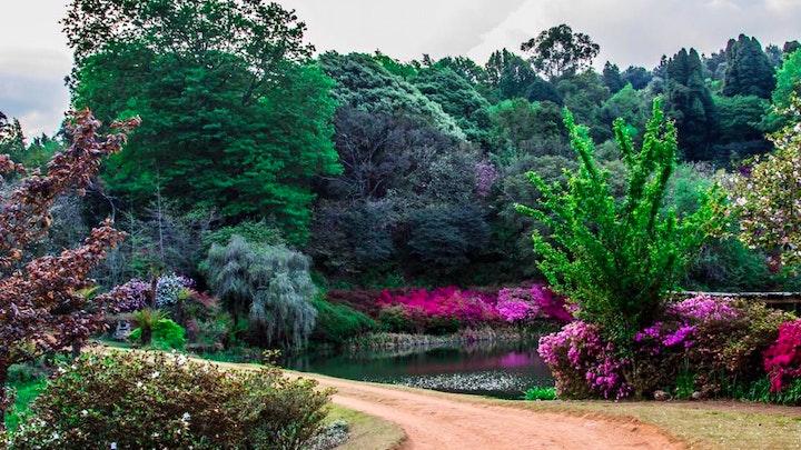 at Cheerio Gardens | TravelGround