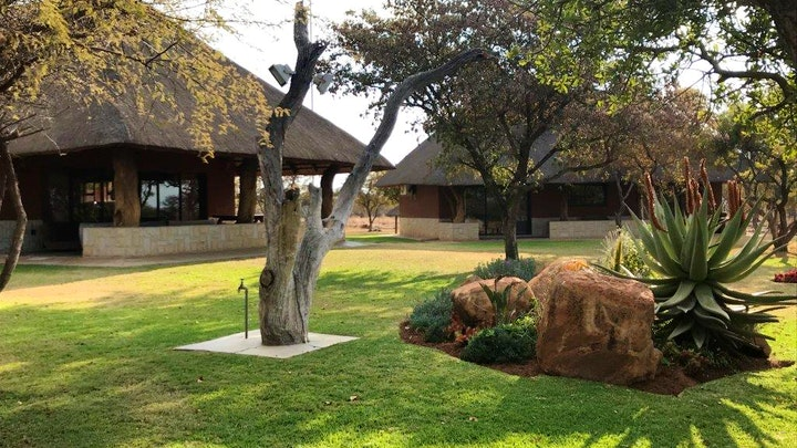 Dinokeng Game Reserve Accommodation at Hogs Guesthouse   TravelGround