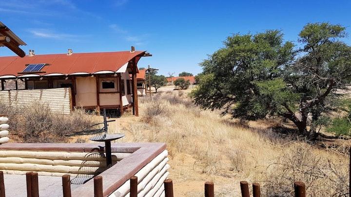 Noord-Kaap Akkommodasie by SANParks Kalahari Tented Camp | LekkeSlaap