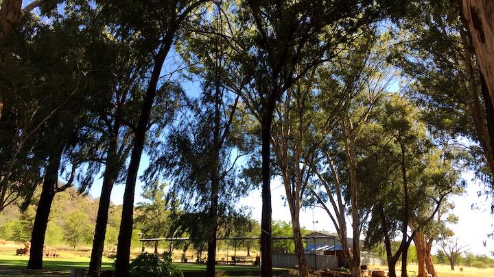 at Rhebok Guest Farm   TravelGround