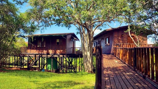 at Bonamanzi Game Reserve - Tree Lodge | TravelGround