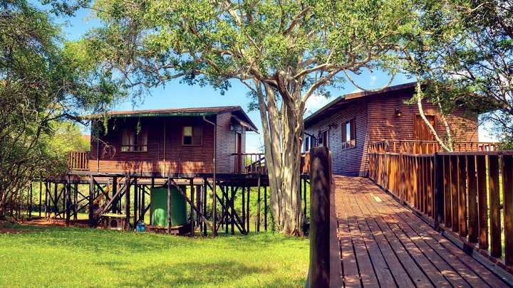 at Bonamanzi Game Reserve - Tree Lodge | TravelGround