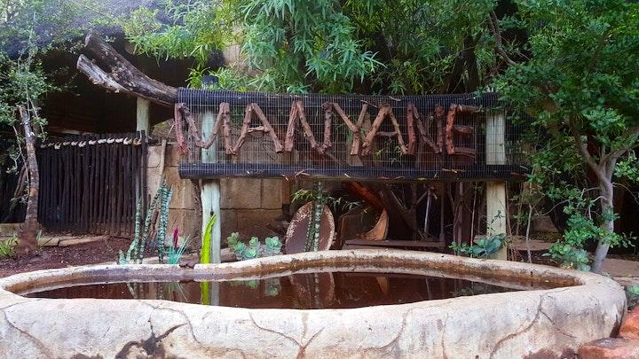 Leeupoort Vakansiedorp Accommodation at Manyane | TravelGround