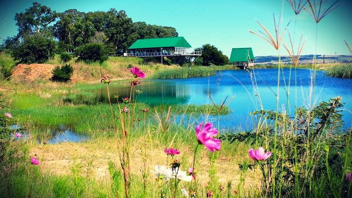 at Grey Goose Game Lodge | TravelGround
