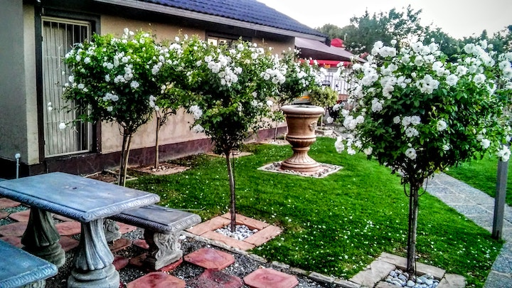 by The White Rose Guest House | LekkeSlaap