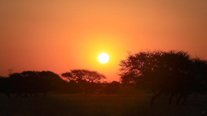 at Marrick Safari | TravelGround